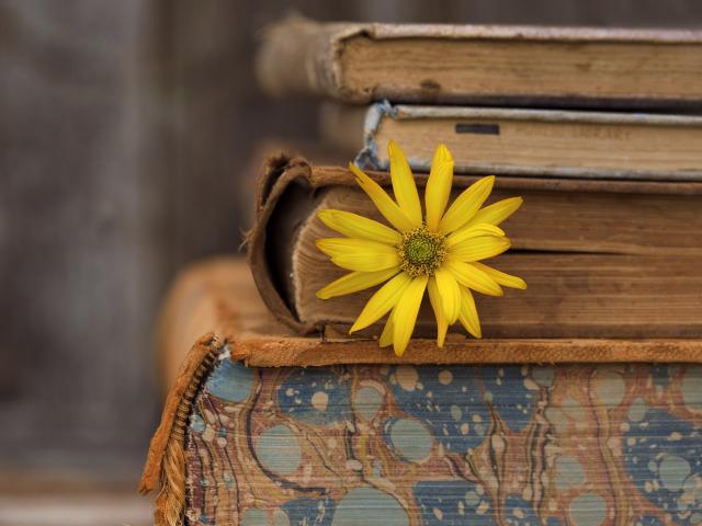 книги по саморазвитию для женщин список лучших